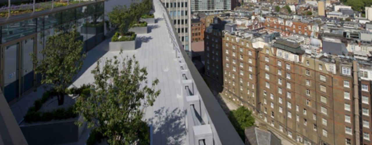 Disciplines | Green Roof Systems